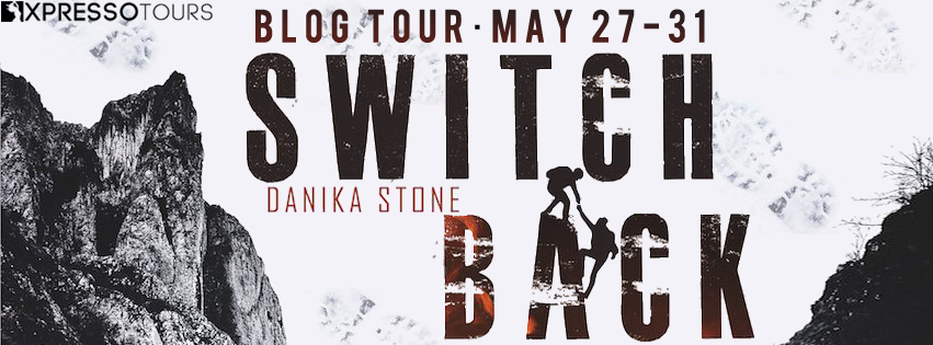 Blog Tour: Switchback by Danika Stone